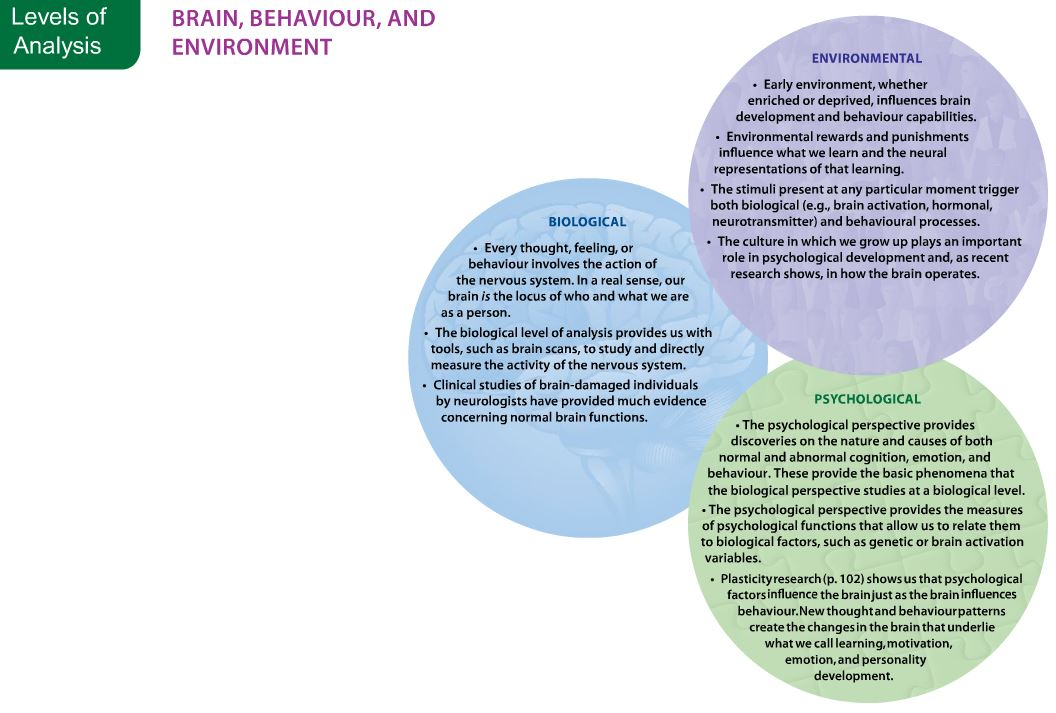 cultural factors that influence personality development
